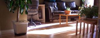 Golden Moulding Laminate Flooring Vancouver