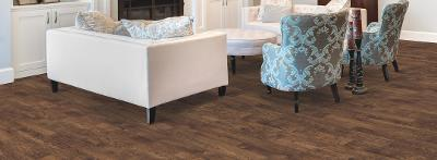 airstep-evolutions-collection-congoleum-vinyl-flooring-vancouver-cmo-floors